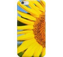 Sunflower Close iPhone Case/Skin