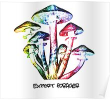 Expert Forager Poster