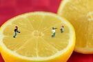 Playing baseball on lemon by Paul Ge