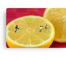 Playing baseball on lemon Canvas Print