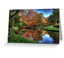 Colors of Autumn in Holland Greeting Card