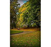 Autumn at Valley Gardens Photographic Print