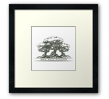 Save Wild Forests Framed Print