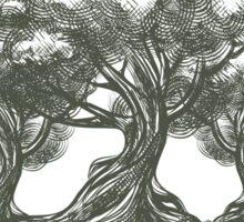 Save Wild Forests Sticker