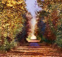 Western Reserve Greenway Trail by Sheri Nye