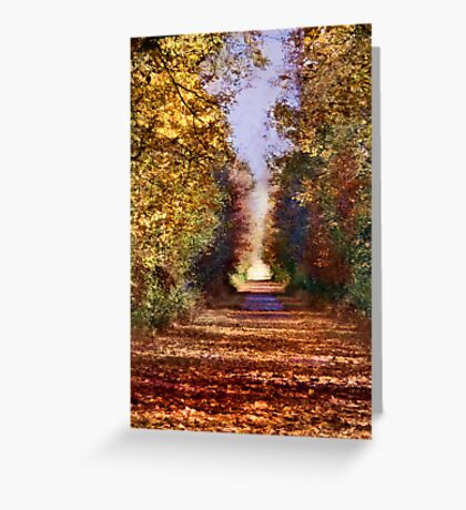 Western Reserve Greenway Trail Greeting Card