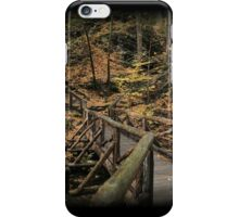 Bridge Of Seasons iPhone Case/Skin