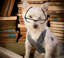 Bookworm Dog by Edward Fielding