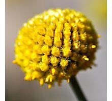 Yellow ball Photographic Print