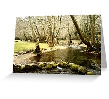river in the park Greeting Card