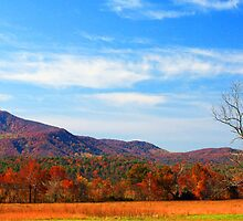 AUTUMN IN THE COVE by Chuck Wickham