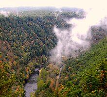 Pine Creek Gorge by Sarah St. Pierre