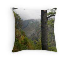 Pine Creek Gorge 2 Throw Pillow