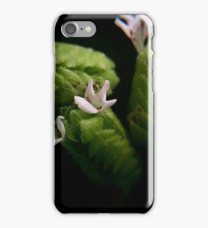 Oregano iPhone Case/Skin