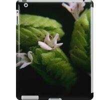 Oregano iPad Case/Skin