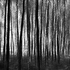 Daylight's Deepest Darkest by OzzieBennett