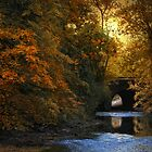 Autumn Country Bridge by Jessica Jenney