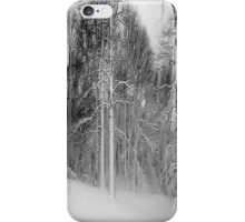 Snow in Virginia iPhone Case/Skin