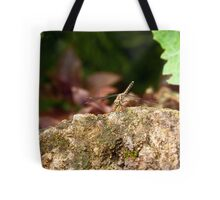 Kenya Dragonfly Tote Bag