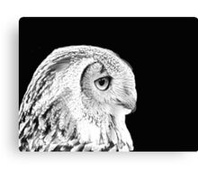 Indian Eagle Owl Canvas Print