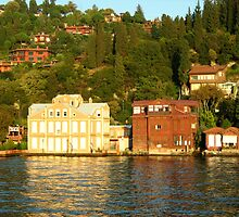 some buildings on the bank of bosphorus. by Alexandra Brovco