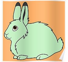Light Green Arctic Hare Poster