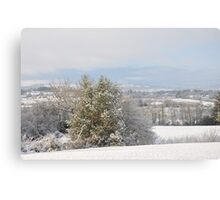 Winter in the hills of Donegal Canvas Print