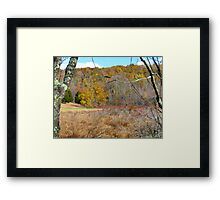 Autumn meadow, New York State Framed Print