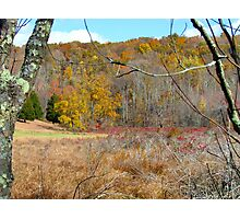 Autumn meadow, New York State Photographic Print