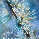 Snow on the Larch Holiday Card by Anita Pollak