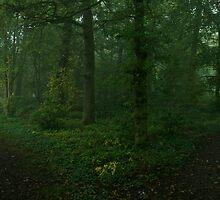 Green wood by brilightning