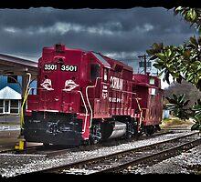 Corman Train by lisakemmer
