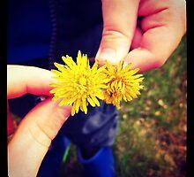 Little Dandelions by kriss53