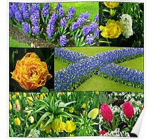 Keukenhof 'Blue Cross' Collage Poster