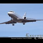 Executive Class Falcon 2000 by Trenton Hill