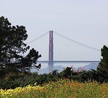 Golden Gate Bridge by ANDREW ROMER
