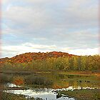The Wetland in Autumn by TrendleEllwood