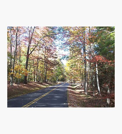 Autumn Colors Rustic Country Road Photographic Print