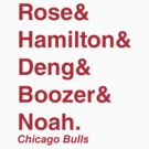 2011-2012 Chicago Bulls Jetset by RiceRemix