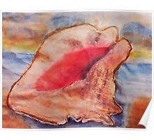 The Conch shell #2, watercolor Poster