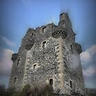 Scalloway Castle ( 1 ) by Larry Davis