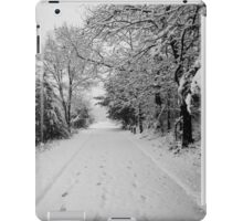 First Snowstorm iPad Case/Skin