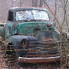 Retro Classic Truck in the Woods by dww25921