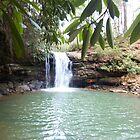 Rustic Appalachian Waterfall in West Virginia by dww25921