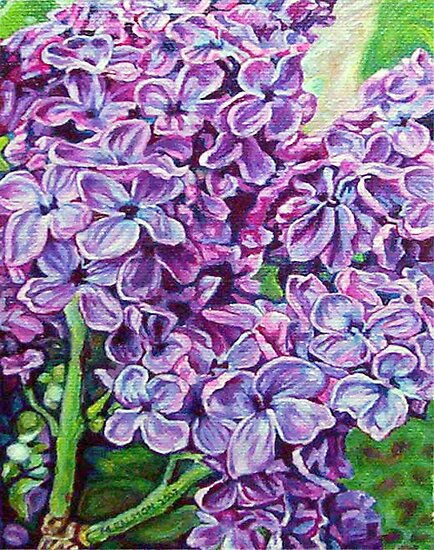 Lilacs No.1 by Morgan Ralston