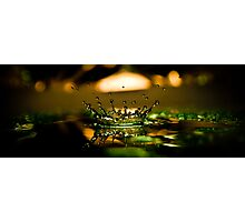 green crown Photographic Print