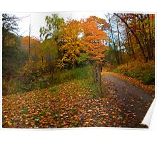 It's snowing leaves Poster