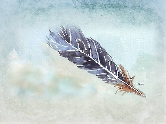 Finding a feather by Maree  Clarkson
