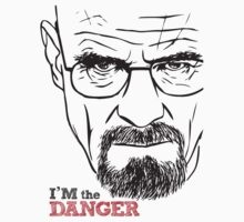 Walter White Breaking Bad by Nativo