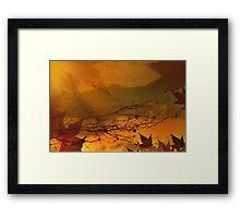 Impressions Of Fall Framed Print